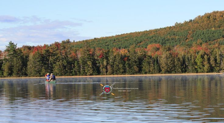 55 best images about moosehead lake maine on pinterest for Maine freshwater fish