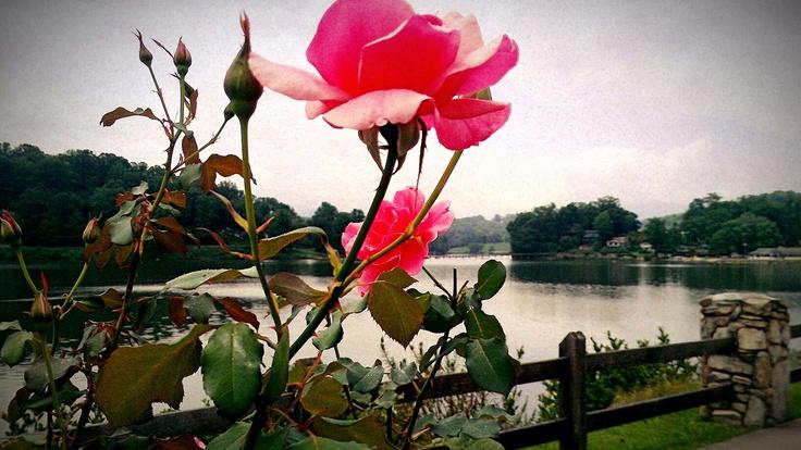 Rosewalk Lake Junaluska, NC