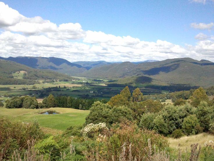 Gunns Plains behind Ulverstone on the N-West Coast of Tasmania.