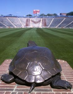 Testudo statue inside Byrd Stadium at University of Maryland (College Park Maryland).