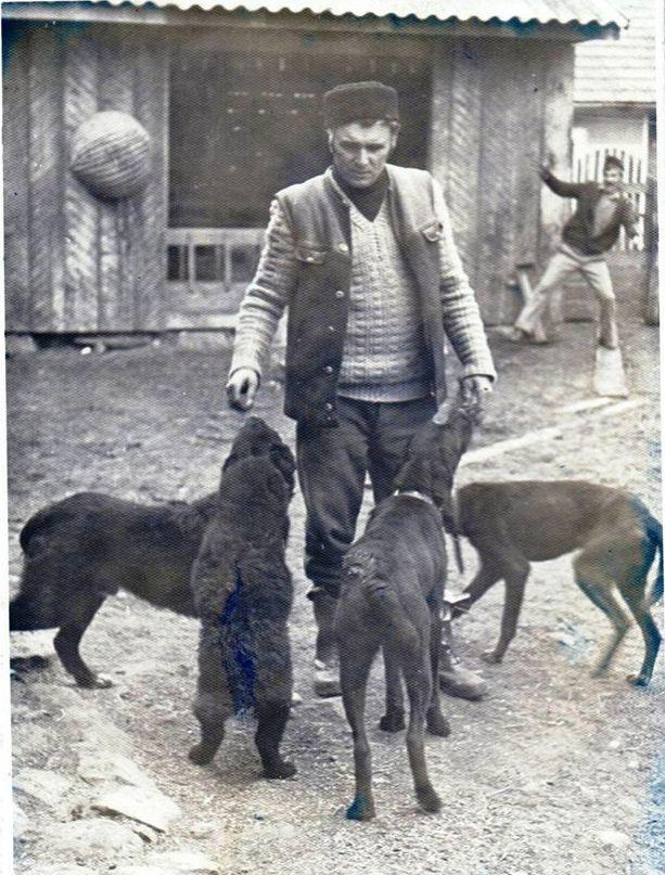 Vintage photo of Raven Shepherd Dog