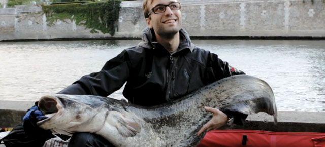 Huge fish, caught in Paris !