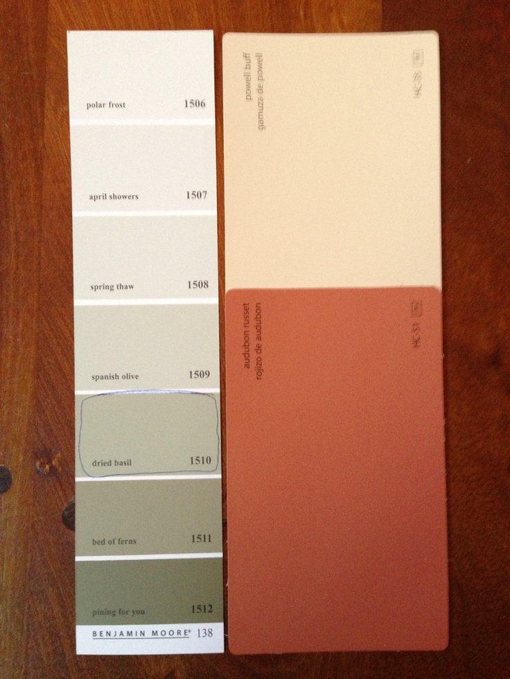 Basement Paint Colors Ben Moore S Powell Buff Audubon