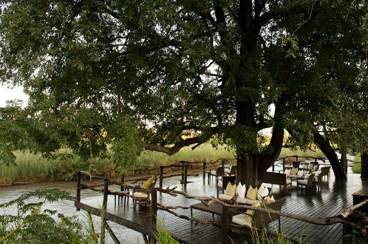 Safari in south Africa - Lion Sands river lodge - Kruger National Park
