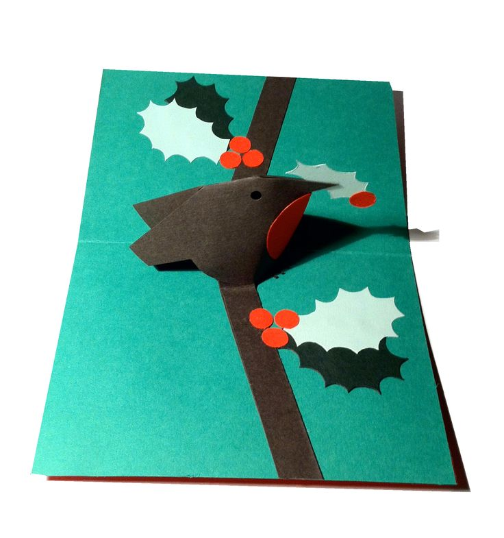 Canu0027t beat a robin Christmas card especially