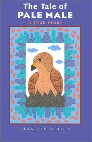 THE TALE OF PALE MALE - true story by Jeanette Winter -- about a Red-tailed Hawk that makes himself at home in the most unlikely of places--atop a high-rise apartment.
