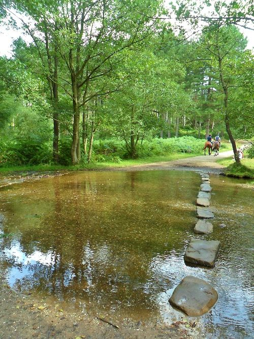 Stepping Stones in Cannock Chase, Staffordshire, England