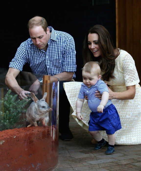 Photos: By George! The Most Adorable Pictures of Prince George on the Australia/New Zealand Royal Tour | Vanity Fair