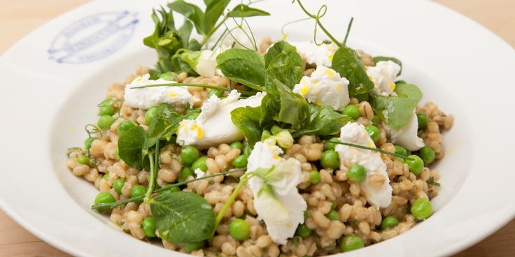 Barley, pea and mint salad with fresh organic goat's cheese. Emily Watkins, a big fan of organic produce, has teamed up with Great British Chefs and the Organic Trade Board to show off beautiful spring produce in this pearl barley salad recipe, served with fresh pea shoots, goat's cheese and mint. The pearl barley is cooked much like a risotto (or 'orzotto' as barley risotto is known as in Italian) but with a lighter feel.
