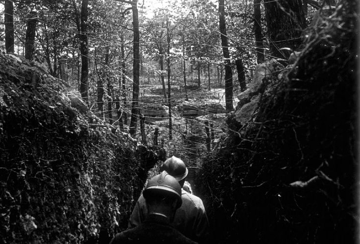 French officers inspecting trenches on the Argonne front, eastern France May 1916. A Viscount in the Armoured Cavalry Branch of the French Army left behind a collection of hundreds of glass plates taken during World War I that have never before been published. The images, by an unknown photographer, show the daily life of soldiers in the trenches, destruction of towns and military leaders. #