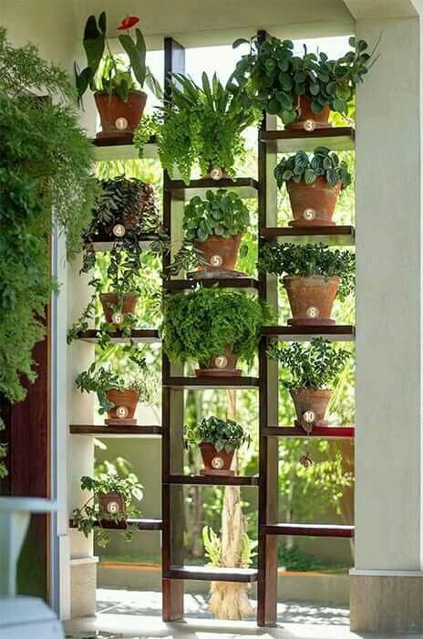 Plant stand / room divider / privacy screen
