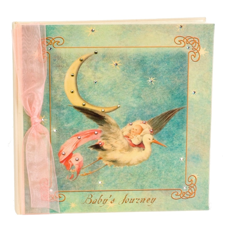Like this baby book  http://www.babysakes.com/ProductDetails.asp?ProductCode=TER-BB-FA-PINK-SW