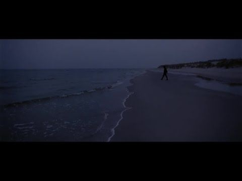 Avicii & Martin Garrix ft. Zayn – FLy Lyrics Video ✔