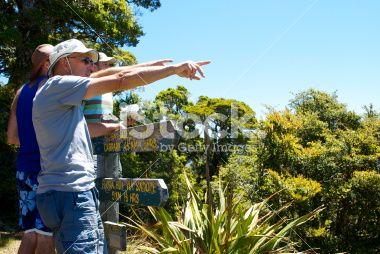 Viewpoint, Mt Arthur, Kahurangi National Park, NZ Royalty Free Stock Photo