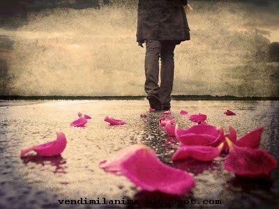 Avevo oltrepassato da un po' quel crocevia di sentimenti confusi scegliendo un passaggio qualunque tra le emozioni più forti, scartando le strade più facili e driblando la ragione. Avevo scelto in un secondo,  chiudendo gli occhi per sentirmi una cosa sola con la vita intorno e seguendo l'istinto che il tempo suggeriva in quell'istante, per non lasciare il sopravvento al dubbio, per schivare la paura di guardare indietro. Non sapevo ancora dove sarei arrivata, non ero sicura di quell'impulso…