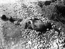 Prisoners of war - An executed US Army POW of the US 21st Infantry Regiment killed By the N. Koreans July 9, 1950.