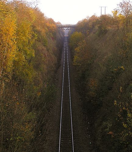 ˚Autumn track - Maltby South Yorkshire - England