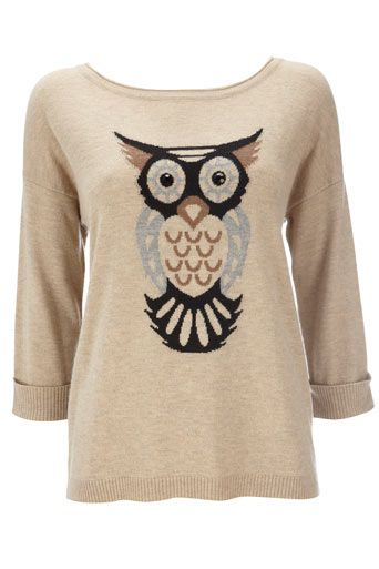 Owl Sweater... I would wear it yes I would, in fact found a fox sweater at a store close by i think I'll buy soon