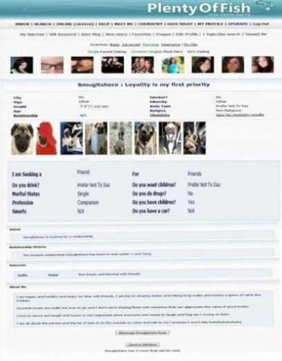 This is my profile on Plenty of fish. I even uploaded pics