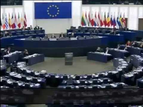 Nick Griffin dénonce l'ethnocide des Européens - Le plan Kalergi