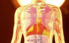 Entgiften nach der TCM - mit Getreidekuren den Körper entschlacken