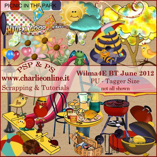 ch-Jun2012-PicnicW4E