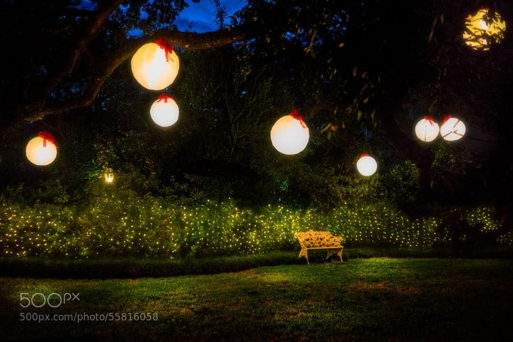 Enchanted Garden by jazzbeaunola