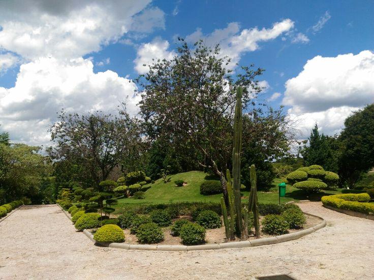 Parque Japonês Maeda - Itu