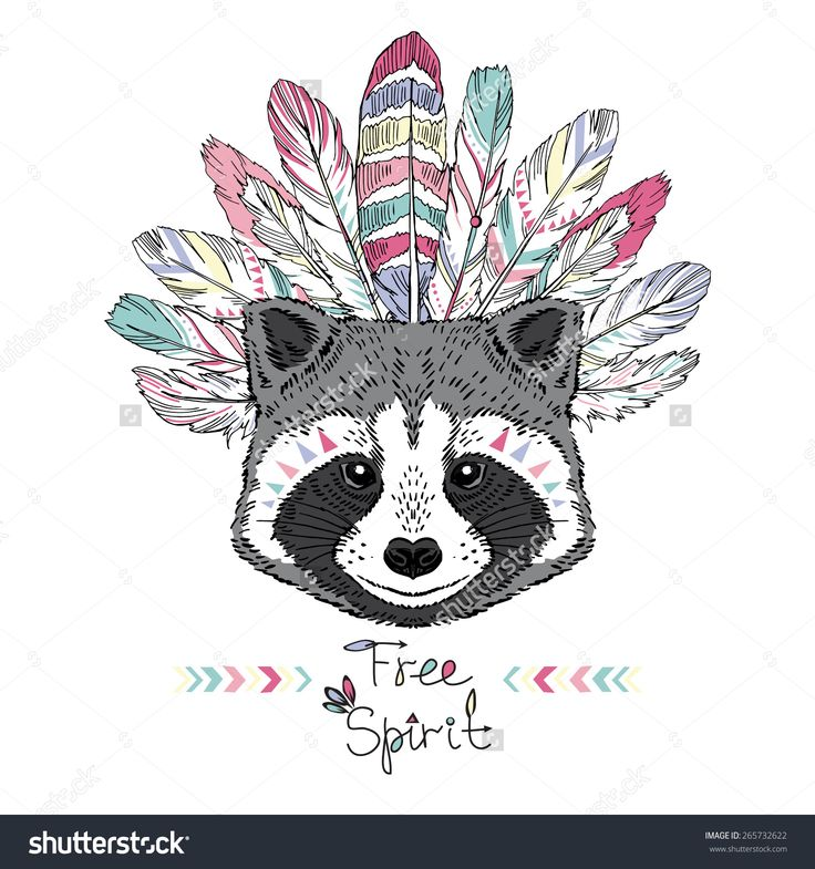 raccoon aztec style, hand drawn animal illustration, native american poster, t-shirt design