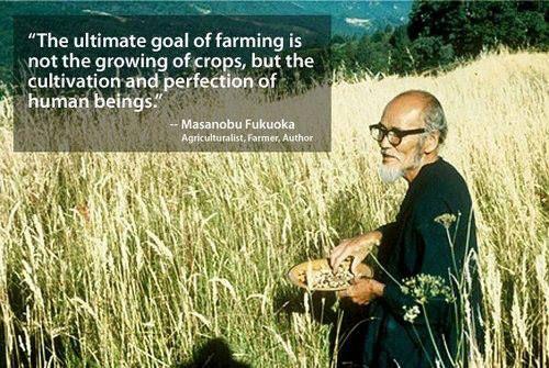 """Masanobu Fukuoka(2 de febrerode1913-16 de agostode2008) fue un agricultor, biólogo yfilósofojaponés, autor de las obrasLa Revolución de una Brizna de PajayLa Senda natural del Cultivoen que presenta sus propuestas para una forma deagriculturaque es llamadaagricultura naturaloel método Fukuoka. Nació en laCiudad de Iyo, en laPrefectura de Ehime. En 1988 recibe elPremio Ramon Magsaysayen la categoría Servicio Público, (es equivalente alPremio Nobelperoasiático).   """"El…"""
