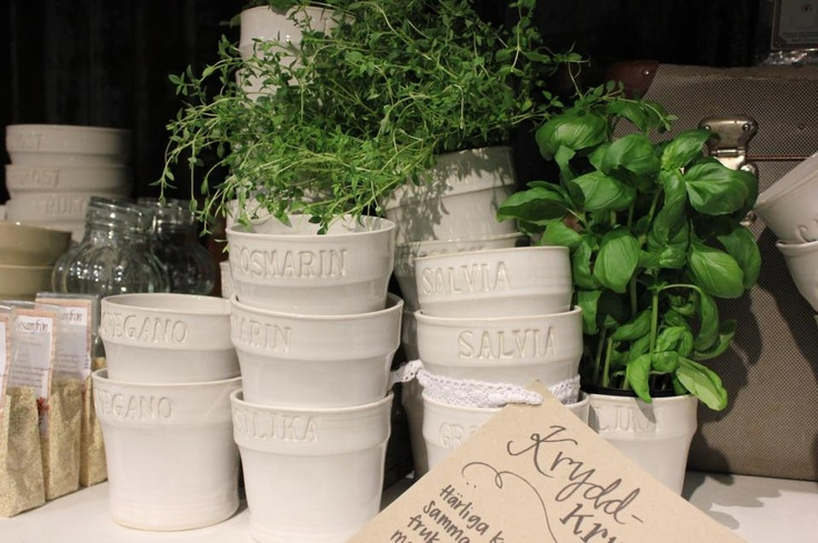 For my herbs in the kitchen! i want Basil, mint, rosemary! From västergården