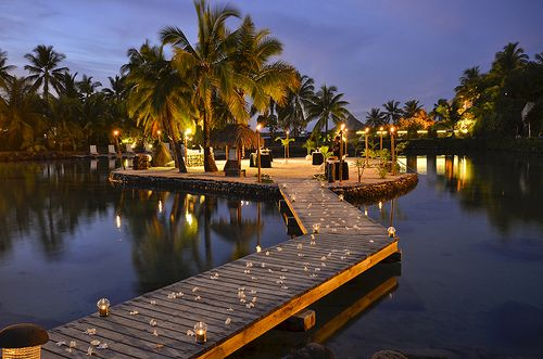 Yes, please!Favorite Places, Dreams, Resorts, Palms Trees, So Pretty, Honeymoons, Travel, Paradise, Romantic Dinner