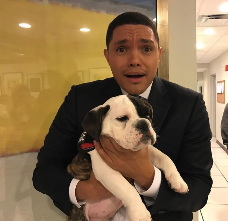 """Trevor Noah on the Nigerian Prince. Trevor Noah launched into a bit about Michael Neu, aka the """"Nigerian prince,"""" with a racial slur, calling him a """"nigga"""" #comedian #Entertainment #celebrity"""