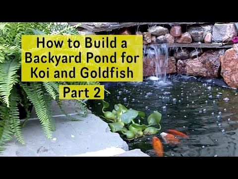 How To Build A Backyard Pond For Koi And Goldfish Part 2
