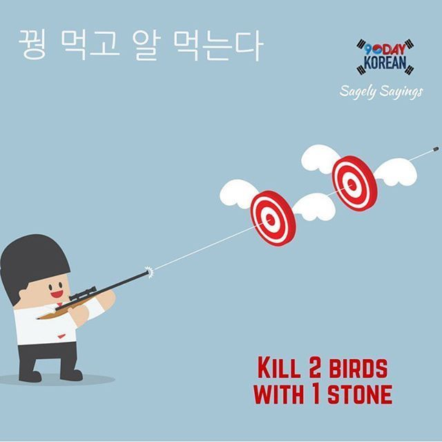 Check out today's �#�Korean� Sagely Saying!  This is a Korean proverb that means �kill 2 birds with 1 stone.� Can�t read Korean yet? Free Korean reading guide (link in bio).  Repin and leave a comment below with your opinion about this saying. ^^ #90DayKorean #LearnKoreanFast #KoreanLanguage