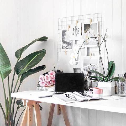 Big Plants   Desk   Legs   Nordic Workspace   Iron Mesh Board