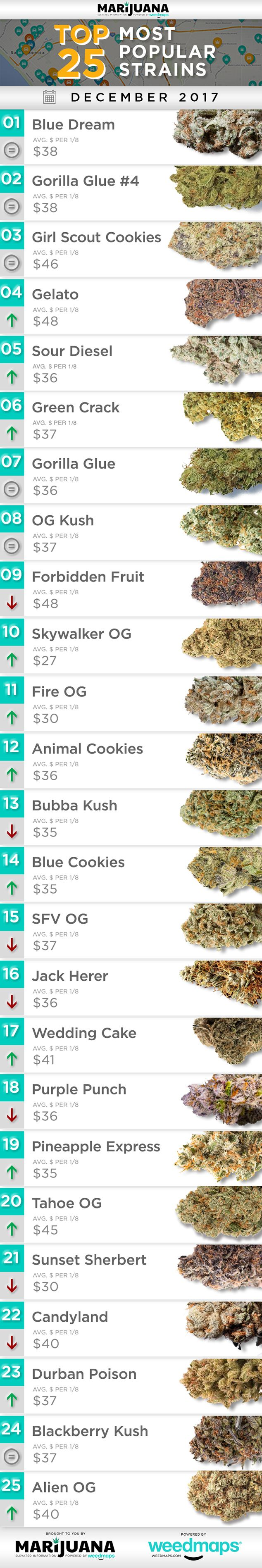 25 Most Popular Cannabis Strains Across North America in December
