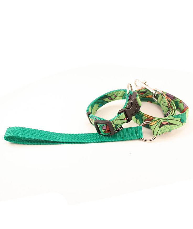 Safety collar with Simple leash