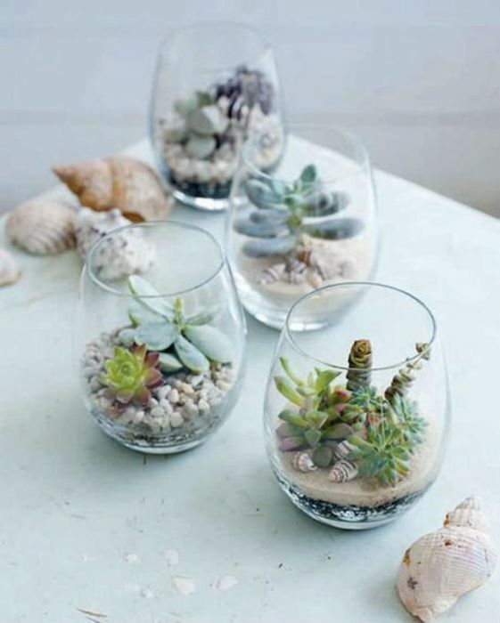 Wine glasses as tiny pots of miniature succulents.