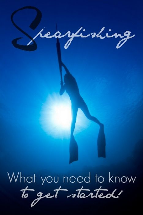 Spearfishing (underwater survival): What you need to know to get started! | Prepared Housewives | #prepbloggers #fishing