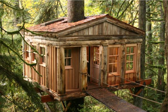 tree houseTreehouse Hotels, Dreams, Treehouse Point, Treehousepoint, Tree Houses, Washington States, Trees House, Places, Blue Moon