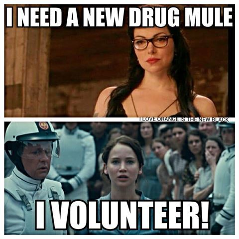 Orange Is The New Black... funny: Orange, Oitnb ️, Volunteer, Funny Meme, Funny Lesbian Jokes, Funny Stuff, 32 Jokes, Laura Prepon, Black