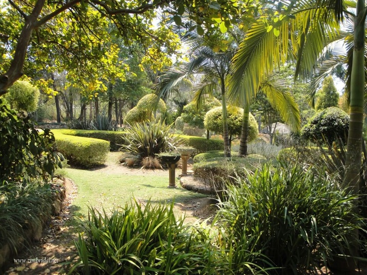 harare tropical garden zimbabwe pinterest tropical