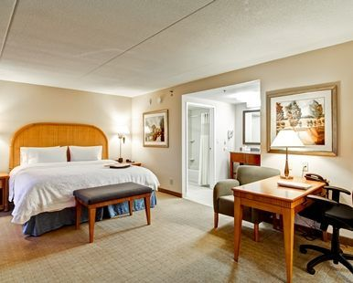Hampton Inn & Suites by Hilton Guelph Hotel, Ontario, Canada - King 1 Room Suite