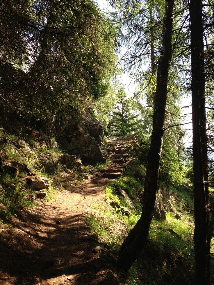Der Meraner Höhenweg zwischen Giggelberg und Nassereith