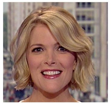 I think Megyn Kelly's hair is so cute.  Just the right length and volume