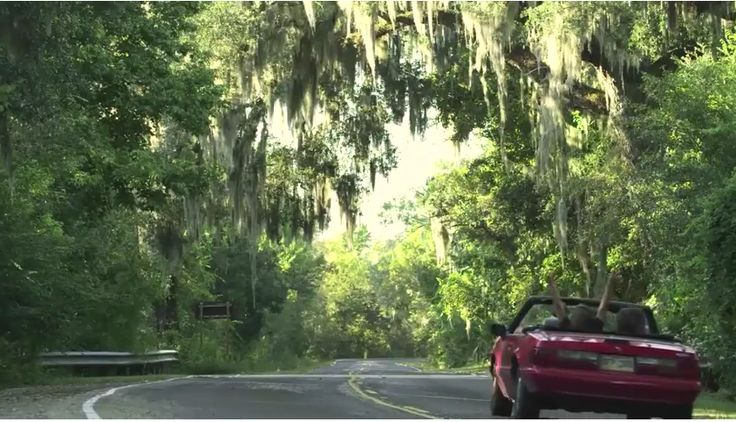 See the sights and sounds of Jefferson Parish, LA!