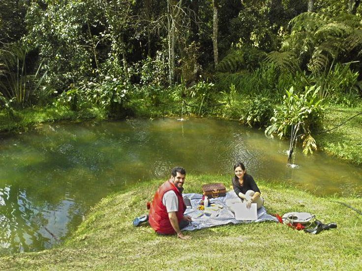Tarde de #picnic al sonar de la #naturaleza y un buen vino