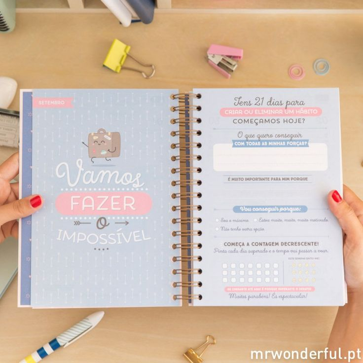 Agenda Mr. Wonderful 2017 '365 Histórias' | Planner ...