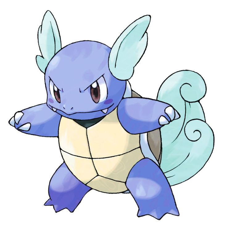 Wartortle - 008 - When tapped, this Pokémon will pull in its head, but its tail will still stick out a little bit. It is said to live 10,000 years. Its furry tail is  popular as a symbol of longevity.  @PokeMasters.net
